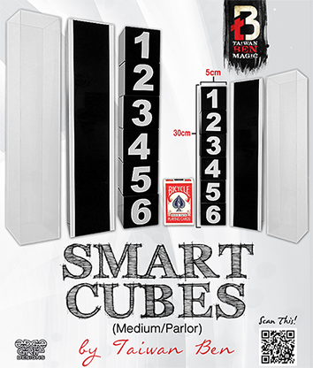 Smart Cubes (Medium / Parlor) by Taiwan Ben