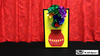 3D Flower Bouquet Blooming Vase by Mr. Magic