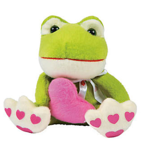 "Fred Gift Set - Free Valentine Frog with the purchase of a Hard Cover ""Sideways Fred"" Storybook"