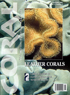Coral Magazine, Back Issue, Vol 2 #2, April/May 2005