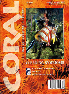 Coral Magazine, Back Issue, Vol 5 #5, Oct/Nov 2008