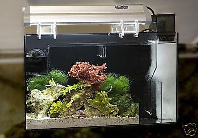 Aquafuge2 PS Hang on Refugium & Protein Skimmer, CPR