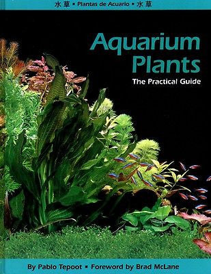 Aquarium Plants by Pablo Tepoot