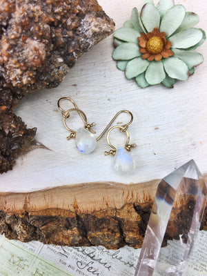 La Luna Bella Earrings 'A' - Moonstone 14k Gold Fill Frames - The Bead N Crystal & Enclave Gems