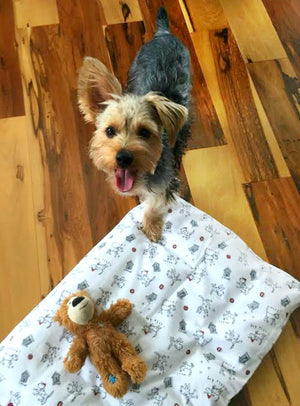 Original Paca Pet Pouf Pet Bed With Tan Rocket Captain Flannel Cover