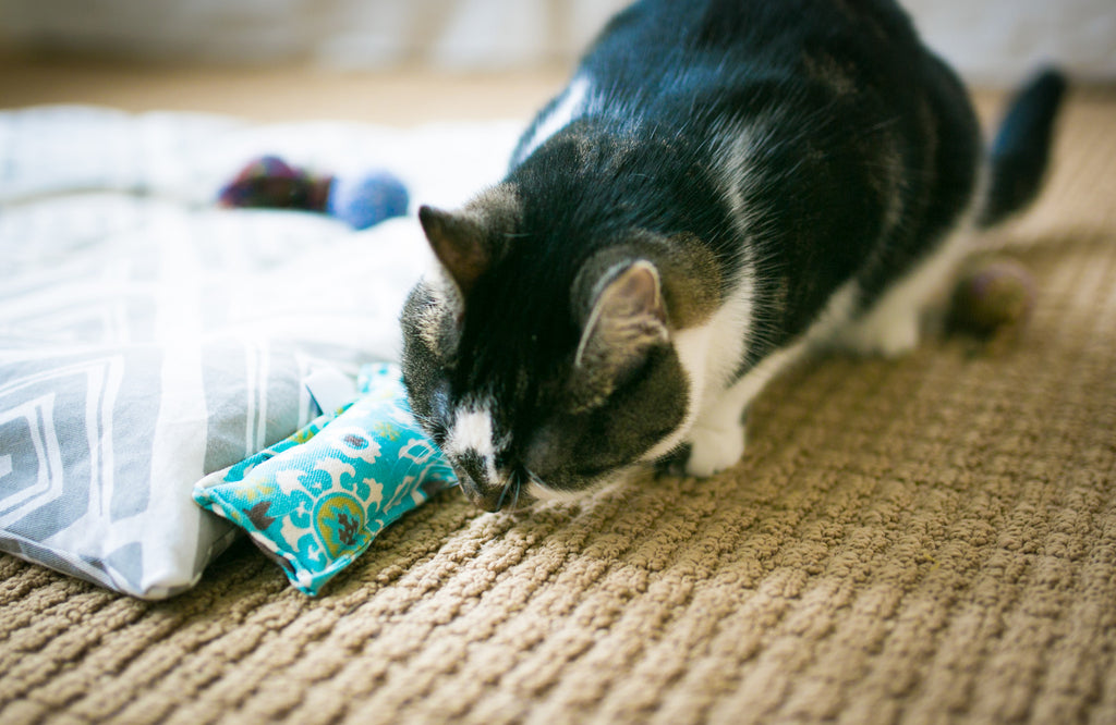Twill Mini Kitty Nip Kicker Catnip Cat Toy in Turquoise Suzani