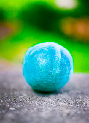 Fetch3.5!  Alpaca Dog Ball in Cool Aqua