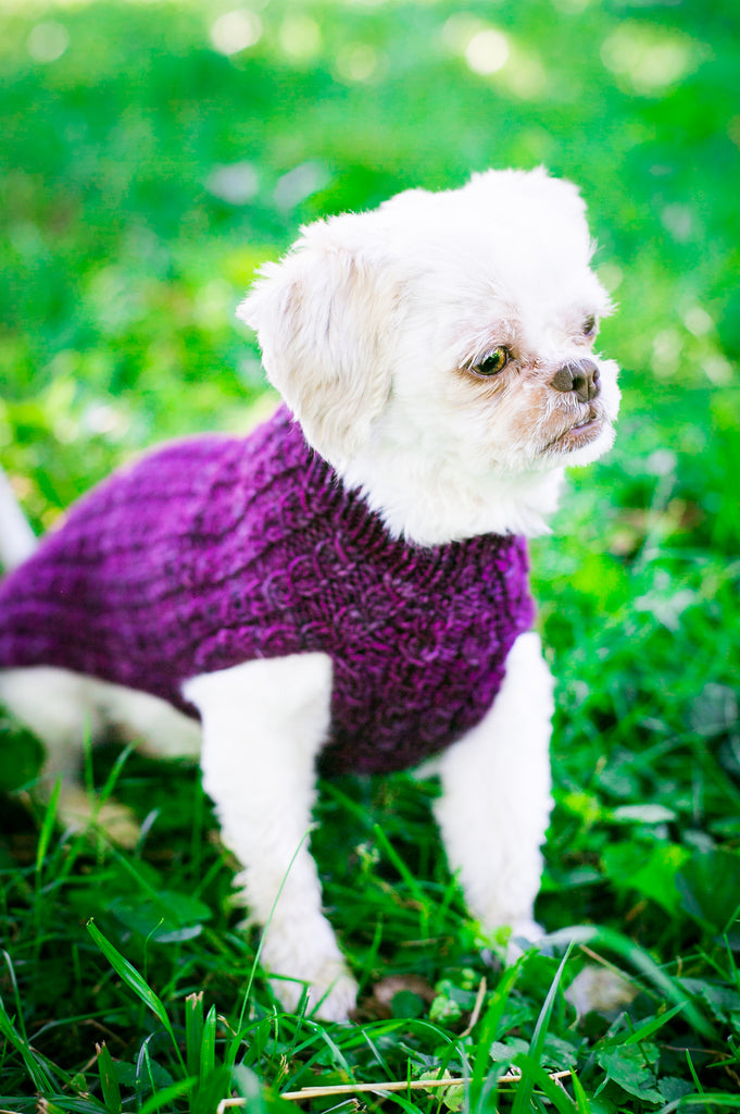 Cat & Dog Pet Sweaters in Blackberry - VERY LIMITED QUANTITIES LEFT!