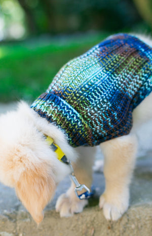 Cat & Dog Pet Sweaters in Edgewater