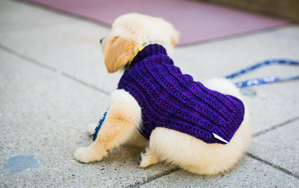 Cat & Dog Pet Sweaters in Ultraviolet