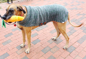 Great Dane Sweaters 3XL, 4XL and 5XL in Shadow