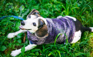 Cat & Dog Pet Sweaters in Black Purl - VERY LIMITED QUANTITIES