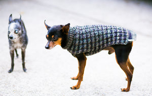 Cat & Dog Pet Sweaters in Pullman