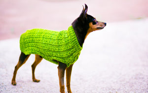 Cat & Dog Pet Sweaters in Basil