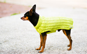 Cat & Dog Pet Sweaters in Melon