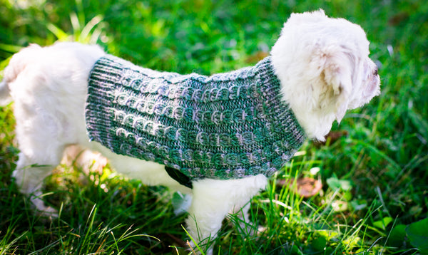 Cat & Dog Pet Sweaters in Humboldt - VERY LIMITED QUANTITIES LEFT!