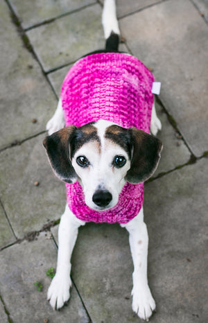 Cat & Dog Pet Sweaters in Tickled Pink
