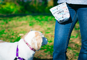 Fun Premium Treat and Pickup Bags Carry Pouch Food Safe Waterproof Lining Choice of Clasps Dog Lover Words OUT OF PRINT