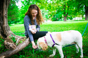 Fun Premium Treat and Pickup Bags Carry Pouch Food Safe Waterproof Lining Choice of Clasps Dog Speak in White LAST TWO