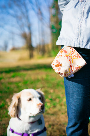 Dog Leash Bag Sweet as Honey Bee With Upgraded Clasp and Closure