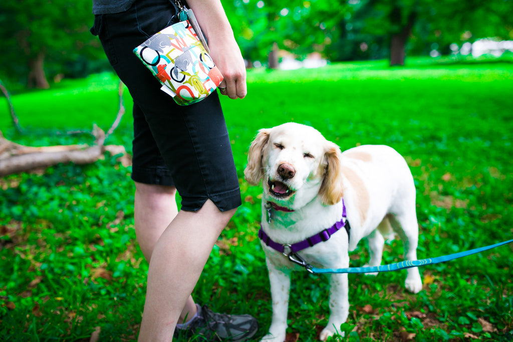 Pooch Pouch Accessory Leash Bag Woof