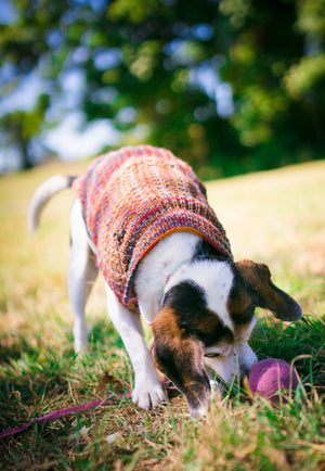 Fetch2.5!  Alpaca and Wool Fiber Dog Ball in Rhubarb Swirl