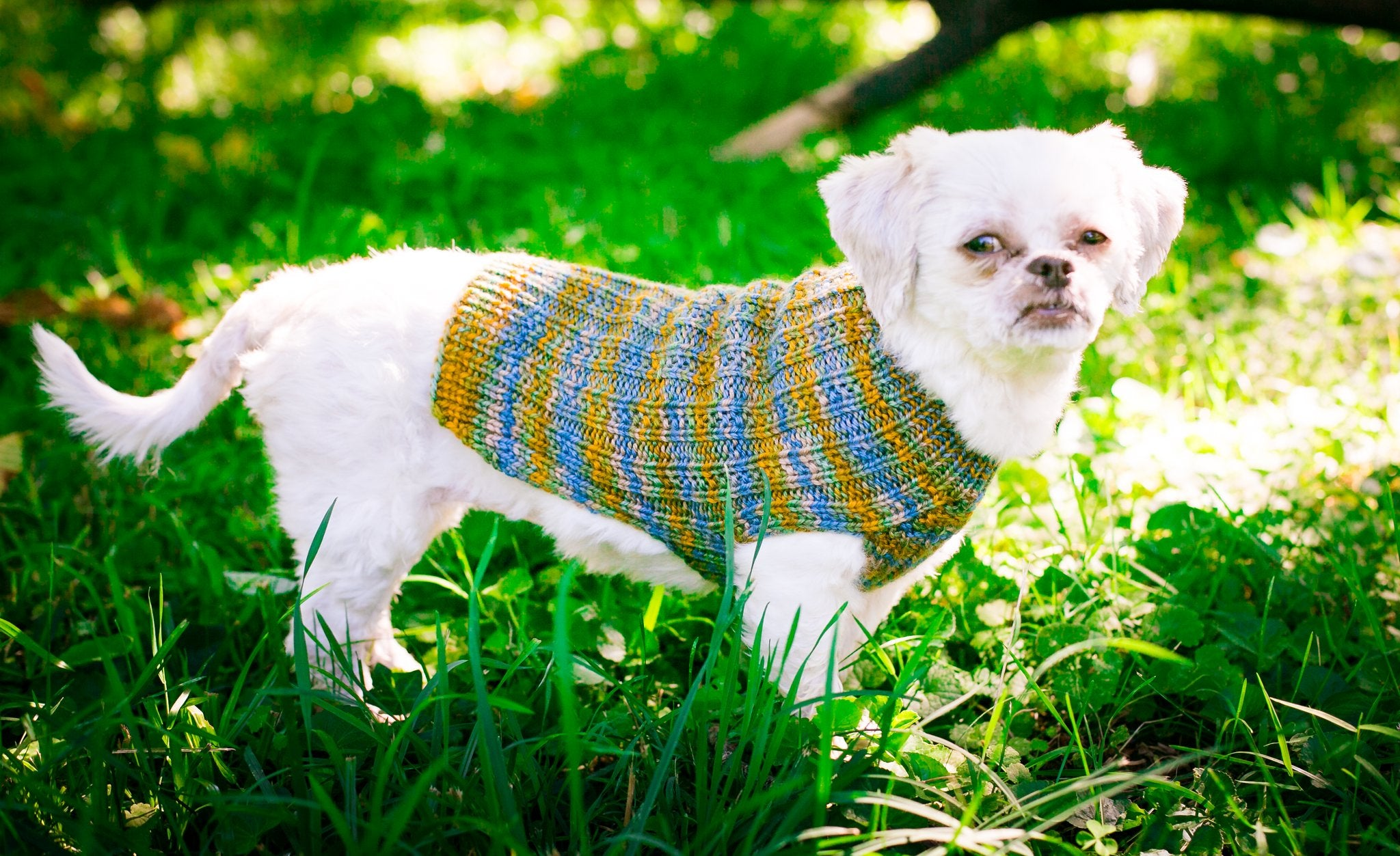 handknit pet sweater
