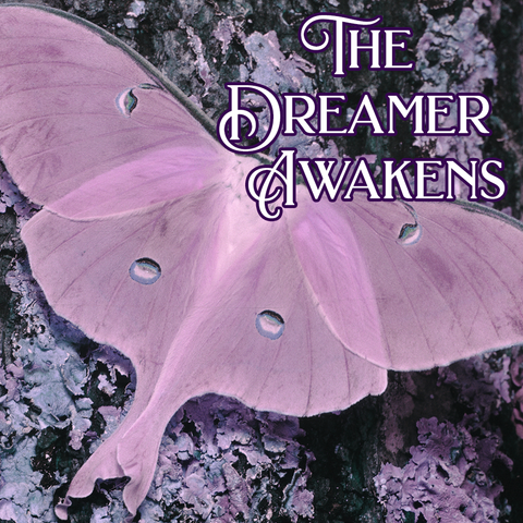 Favorites Collection: THE DREAMER AWAKENS