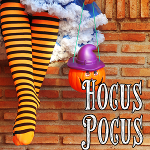 Halloween Collection: HOCUS POCUS