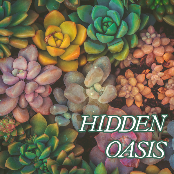 Favorites Collection: HIDDEN OASIS