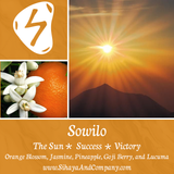Runes Collection: SOWILO