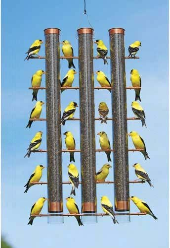Finches Favorite 3-Tube Feeder