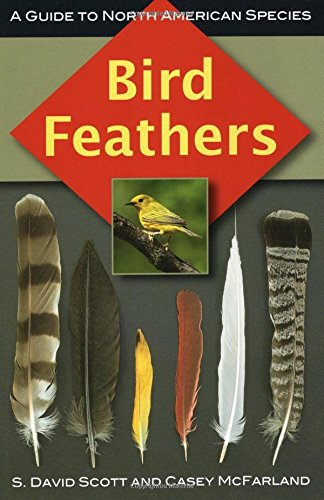 BIRD FEATHERS by Scott & McFarland
