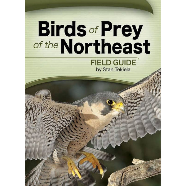 Birds of Prey of the Northeast field guide by Stan Tekiela