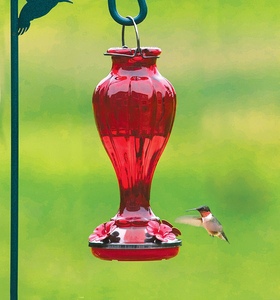 More Birds Red Blossom Hummingbird Feeder Glass - 20 oz.