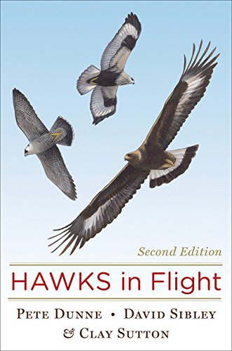 Hawks in Flight (Second Edition)