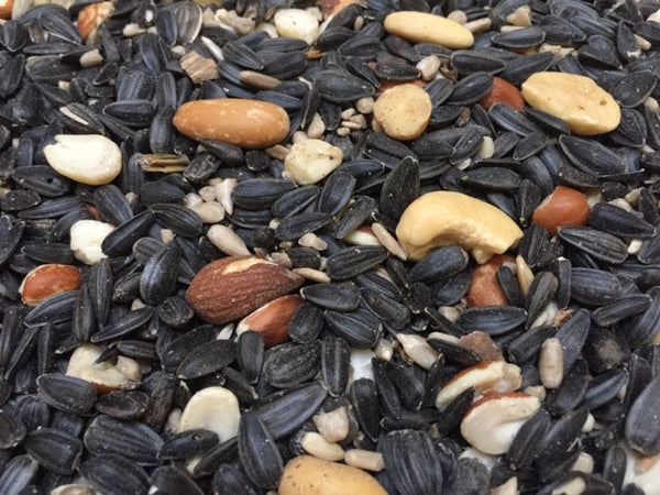 Pecos Blend | Wild Bird Seed 20 lb (9.07 kg) - Feathered Friends of Santa Fe (www.ffofsf.com)