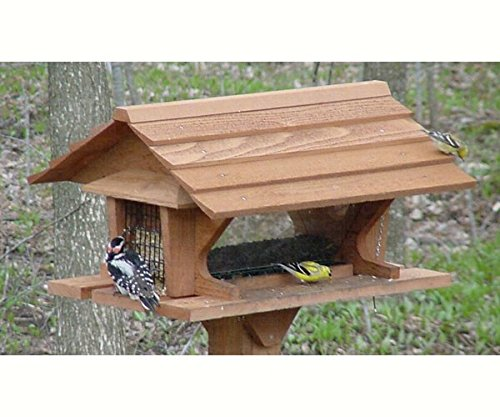 Super Bird Feeder - Holds 2 1/2 Gallon Seed/2 Suet Cakes