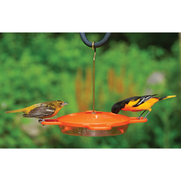 Aspects Oriole Feeder - 16 oz.