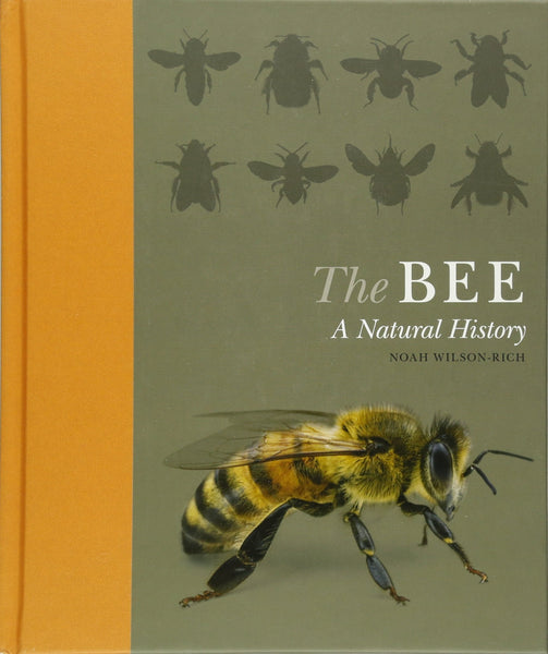 The BEE -A Natural History by Noah Wilson-Rich
