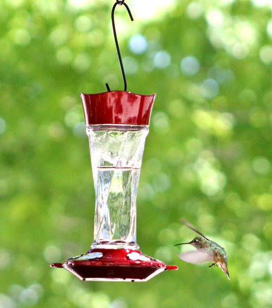More Birds Twist Hummingbird Feeder 11 oz.