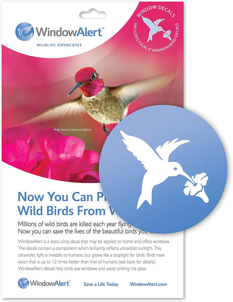 Window Alert | Hummingbird Decal