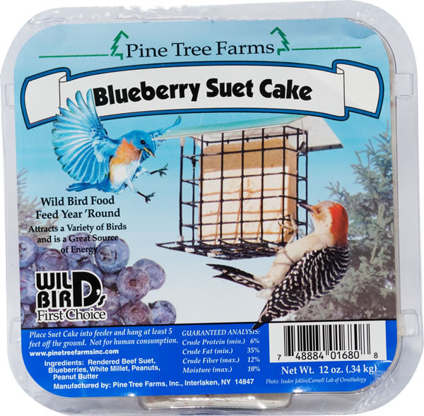 Blueberry Suet Cake 12 oz | Wild Bird Food - Feathered Friends of Santa Fe (www.ffofsf.com)