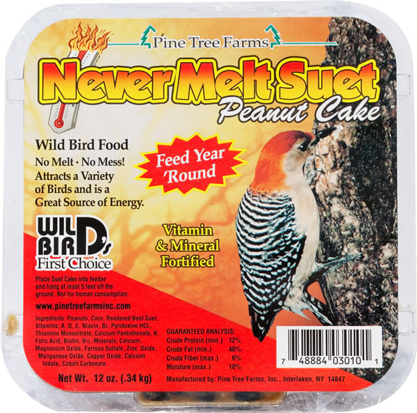 Never Melt Suet | Peanut 12 oz | Wild Bird Food - Feathered Friends of Santa Fe (www.ffofsf.com)