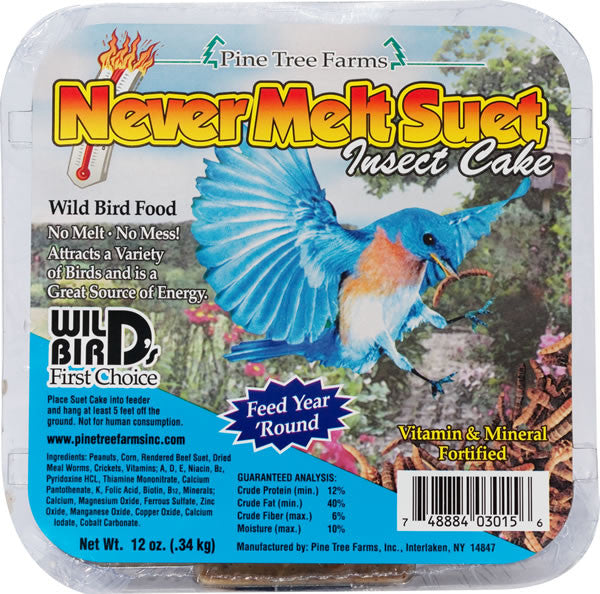 Never Melt Suet | Insect Cake 12 oz | Wild Bird Food - Feathered Friends of Santa Fe (www.ffofsf.com)