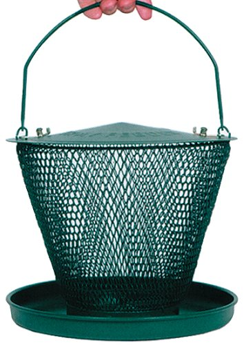NO/NO Wire Basket Bird Feeder