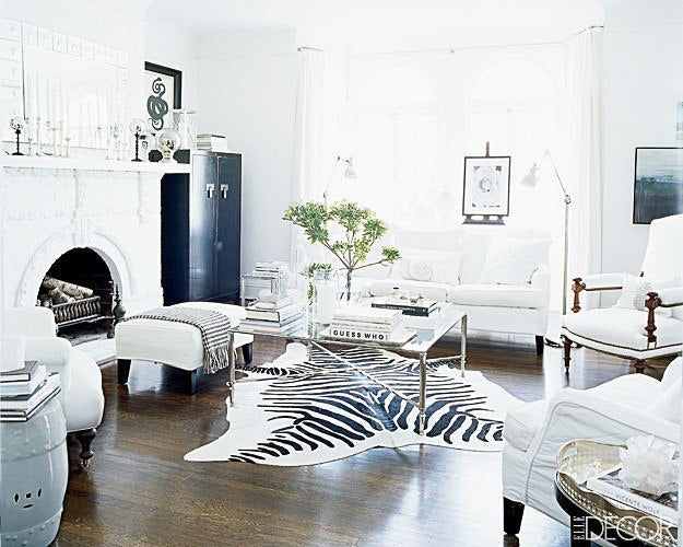 Zebra-Rug-Statement-Area-Rug