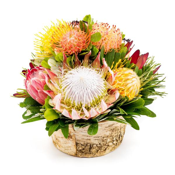 Five Kula Lani Protea Baskets