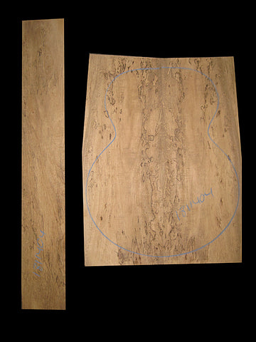 Spalted Mango
