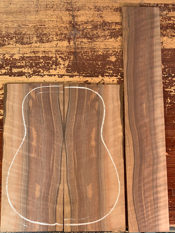 Curly Bastogne Walnut
